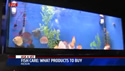 video - Choosing the Right Fish for your Aquarium