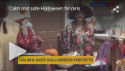 video - halloween safety for pets