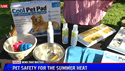 video - Keeping Pets Safe in Summer